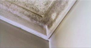 problème d'humidité de condensation